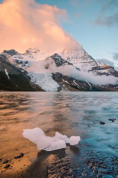 Mount Robson by Stevin Tuchiwsky