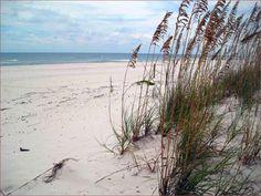 Google Image Result for http://gulfshoresluxuryrentals.com/gulf-shores-beach-house/1-gulf-shores.jpg