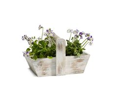 This charming trug will look great planted out or as a decorative ornament in the home or garden.This trug is beautifully finished and lined with a plastic liner ready for planting out with bulbs, flowers or herbs. Whether sitting on a window sill or as a feature in the centre of a table, it makes a great focal point. A classic natural wood design, this trug has a whitewash finish and makes a lovely gift for special occasions such as Mother's Day when planted with flowers or for Father's Day…