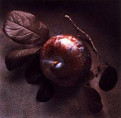 beautiful pomegranate