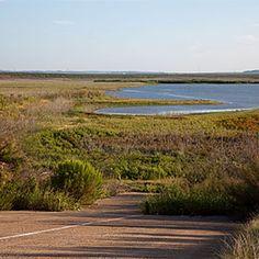 Nature Walks in San Angelo Texas