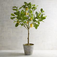 3' Faux Lemon Tree Green