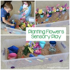 Planting Flowers Sensory Bin – Frugal Fun For Boys and Girls