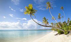 #Guadeloupe . Somptueuse région de l'outre-mer Français, ce petit territoire des Antilles se situe dans la mer des caraïbes. Île la plus étendue de l'archipel,  la Guadeloupe regroupe en réalité plusieurs îles, à commencer par Karukera qui a la forme d'un curieux et gigantesque papillon végétal, et ses dépendances : les Saintes, Marie-Galante et La Désirade. Détente et soleil sont au rendez-vous pour cette destination familiale de rêve. http://vp.etr.im/XY