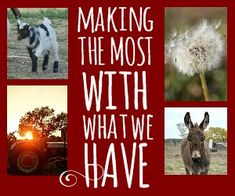 Making the Most With What We Have. Living the simple life means changing the way you operate.