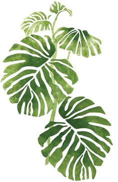66 ideas plants illustration art leaves for 2019 Art And Illustration, Botanical Illustration, Botanical Art, Watercolor Illustration, Tropical Leaves, Palm Tree Leaves, Plant Leaves, Watercolor Paintings, Canvas Paintings