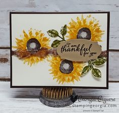 Who doesn't love sunflowers? You'll love the many looks you can achieve with Stampin' Up!'s new Painted Harvest stamp set. More details on my blog . . . www.stampingeorgia.com