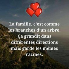 La famille. #citation #citationdujour #proverbe #quote #frenchquote #pensées #phrases #french #français
