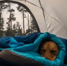 Despertar así Fotografía cortesía de @ourcamplife #LacuadraU #DespertarAsi #Momentum #MomentumLCU