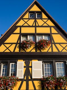 Colmar half timbered house