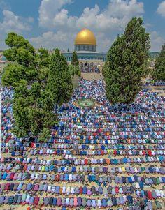 Ramadan en Al Qudus, Palestina. Beautiful Mosques, Most Beautiful Cities, Islamic World, Islamic Art, Islamic Quotes, Jumma Prayer, Hinata, Palestine Art, Dome Of The Rock