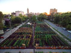 encompassing a 2 acre garden, a fruit orchard with 200 trees & a sensory garden for kids, America's first urban 'agrihood' feeds 2,000 households for free... by Michigan Urban Farming Initiative