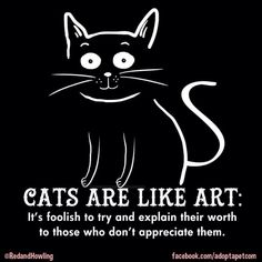 They'll never understand, sadly. Crazy Cat Lady, Crazy Cats, Cute Cats, Funny Cats, Grumpy Cats, Cat Anime, Image Chat, Cat Whisperer, Gatos Cats