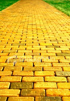 I follow my yellow brick road!