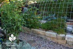 cattle panel quonset design raised limestone wicking bed vegetables Central Texas Gardener