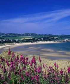 abersoch, North Wales - Google Search