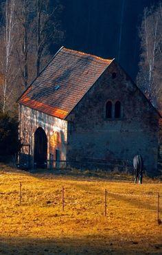 Barn & Black Horse Grazing