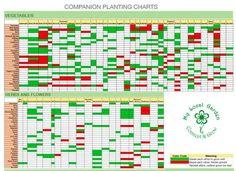 planting gardens in graves pdf
