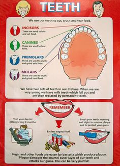 Dental tips for caring your #teeth with beautiful #smile Visit:http://confidentdentalcare.in/