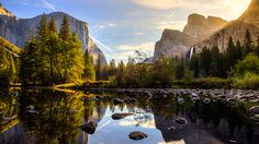 Yosemite Valley View Sunrise - Taken at the valley view in front of the Merced River, in Yosemite National Park, California California Camping, California Usa, Southern California, National Park Tours, Yosemite National Park, Camping Spots, Go Camping, Camping Jokes, Camping Ideas