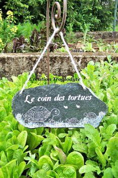 Tortoise Turtle, Permaculture, Nature, Decoration, Caramel, Images, Construction, Windows, France