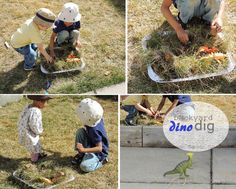 Small Wonders: Dino dig