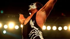 http://www.meganmedicalpt.com/ Sting suffers neck injury during WWE show | FOX Sports