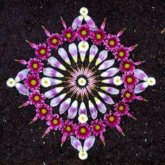 » 15 цветочных мандал от Кэти Кляйн Это интересно!
