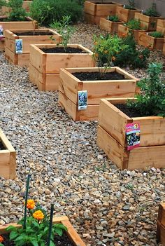 River rock between raised beds, laid over a high quality weed suppression fabric, is a keeper. Play sand and pea gravel are also often used by savy raised bed community garden members as a tool for reduction of weeding make-work...