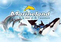Marineland - Antibes Juan les Pins