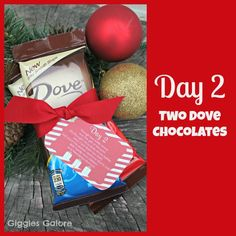Giggles Galore: 12 Days of Christmas Service: {Day 2} Two Turtle Doves