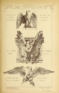 Materials and documents of architecture and sculpture : classified alphabetically Roman Sculpture, Sculpture Art, Drawing Sketches, Art Drawings, Eagle Art, Esoteric Art, Antique Illustration, Renaissance Art, Old Art