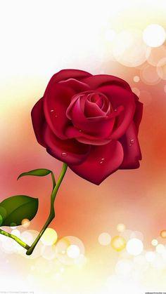 http://wallpaperformobile.org/12646/the-rose-wallpaper.html - The Rose Wallpaper