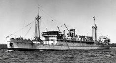 MV MALAITA built for Burns Philp on the Clyde in 1933. 1965 Pilar Regidor. 1968 Linda Jr. 1971 scrapped Kaohsiung.