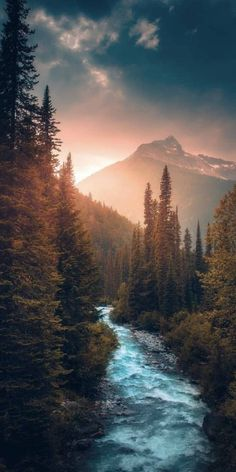 Ideas for beautiful tree photography scenery god Natur Wallpaper, Nature Aesthetic, Landscape Photos, Nature Pictures, Amazing Nature, Pretty Pictures, Beautiful Landscapes, Aesthetic Wallpapers, Beautiful Places