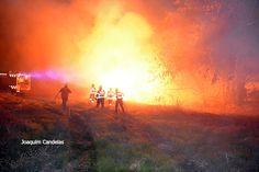 Campomaiornews: Incêndio na Estrada da Barragem (EN 273) em Campo ...