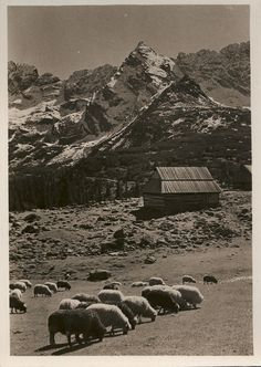 the Tatra Mountains, 1938