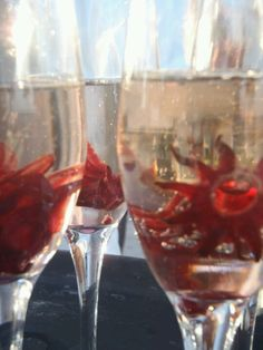 Going to get hibiscus from the store and do this...welcome party toast/reception or all