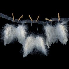 THE WINGS of ANGELS... °
