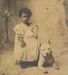 Pit Bull The Original Nanny Dog!