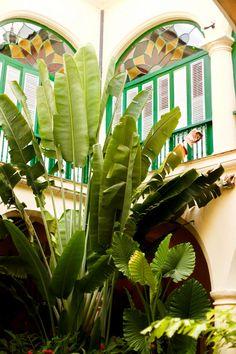 Cuba- Saludos desde La Habana