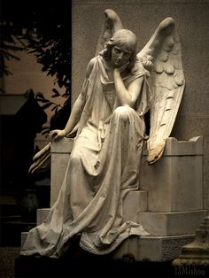 Angel deep in thought! Cemetery Angels, Cemetery Statues, Cemetery Art, Angels Among Us, Angels And Demons, Arte Do Sistema Solar, Old Cemeteries, Graveyards, I Believe In Angels
