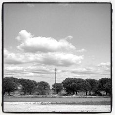 #Lisboa_27042016  #bnw_oftheworld #ig_bnw #ig_lisboa_ #igersportugal #igersphotography #mono #monochrome #artmonochrome #ae_bnw#_world_in_bw#collection_bw#urbanocity#imagephilia#Loves_United_BNW#bnw_madrid#bnw_lisboa#top_bnw#bnw_lombardia by bnw_topiko235
