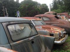 Race for the Rust  Gabriella Duncan Photography 2o14