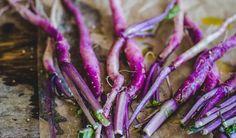 Hinona Kabu turnip (Japanese Turnip) recipes…