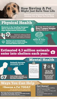 Pet Rescue is Good for Your Health Infographic (From Tails Pet Media Group Inc) - Pin now, read later!