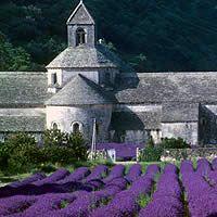 Notre Dame de Sénanque - Abbaye