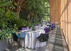 Latające talerze - blog o restauracjach: Belvedere