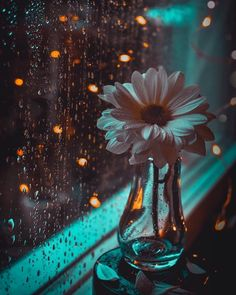 "soul-of-an-angel: ""Rainy days Rainy Day Wallpaper, Bright Wallpaper, Flower Phone Wallpaper, Aesthetic Pastel Wallpaper, Cute Wallpaper Backgrounds, Pretty Wallpapers, Galaxy Wallpaper, Aesthetic Wallpapers, Hd Wallpaper"