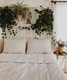 These two draping, dark pothos plants frame this neutral Oatmeal Quilt-laden bed. These two draping, dark pothos plants frame this neutral Oatmeal Quilt-laden bed. Stylish Bedroom, Cozy Bedroom, Room Decor Bedroom, Living Room Decor, Bedroom Ideas, Master Bedroom, Modern Bedroom, Contemporary Bedroom, Bed Room